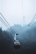 Cable car, fog, trees, morning, Canada