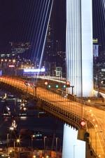 Preview iPhone wallpaper City, bridge, night, lights