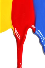Colorful paint, rainbow color, white background