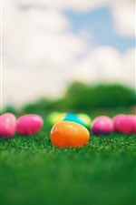 Preview iPhone wallpaper Colorful toy eggs, grass
