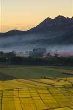 Preview iPhone wallpaper Countryside, golden fields, mountains, fog, morning
