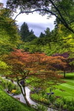 Preview iPhone wallpaper Garden, trees, meadow, green, footpath, people
