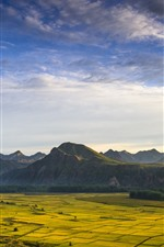 Golden fields, mountains, beautiful nature landscape