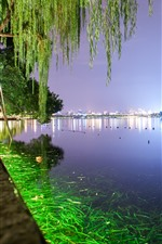 Preview iPhone wallpaper Hangzhou West Lake, night, trees, green illumination, park, China