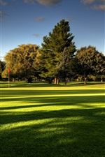 Preview iPhone wallpaper Lawn, golf land, trees