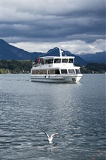 Lucerne, Switzerland, river, swan, birds, ship
