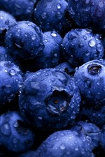 Many blueberries, water droplets