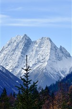 Preview iPhone wallpaper Mount Siguniang, snow, trees, autumn, China
