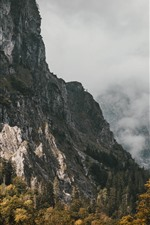 Preview iPhone wallpaper Mountains, fog, trees, autumn, morning