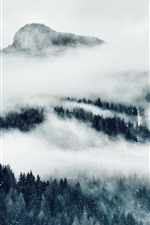 Preview iPhone wallpaper Mountains, fog, trees, black and white picture