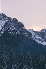 Preview iPhone wallpaper Mountains, trees, rocks, snow, winter