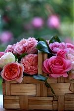 Una cesta de rosas, flores, fondo nebuoso