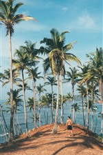 Palm trees, man, sea
