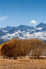 Pamirs, montanhas nevado, árvores, grama, outono