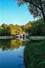 Preview iPhone wallpaper Park, bridge, lake, grass, willow