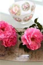 Rosas rosadas, cuenco