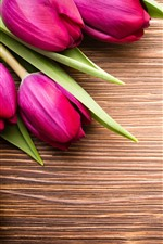 Pink tulips, bouquet, wood board