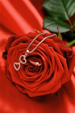 Red rose, necklace, ring, romantic