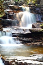 Rocks, waterfall, bushes