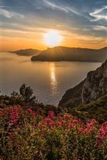 Preview iPhone wallpaper Sea, flowers, rocks, road, sunrise, morning