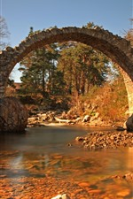 Preview iPhone wallpaper Stone bridge, arch, river, trees