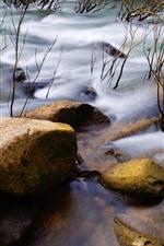 Pedras, córrego da água, Rio, galhos