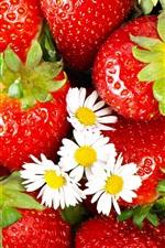Fresas de manzanilla blanca
