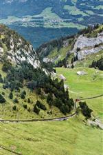 Switzerland, Pilatus, montanhas, inclinação, árvores, trem, estrada de ferro
