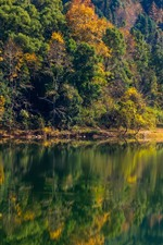 Preview iPhone wallpaper Trees, lake, water reflection, autumn