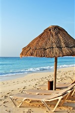 Tropical, mar, praia, cadeiras, guarda-chuvas