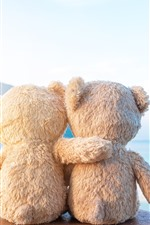 Preview iPhone wallpaper Two teddy bears, friends, rear view