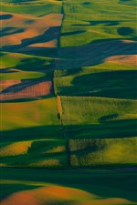Preview iPhone wallpaper USA, Palouse, green wheat fields, hills, sunshine, shadow