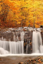 Preview iPhone wallpaper Waterfall, forest, trees, rocks, autumn