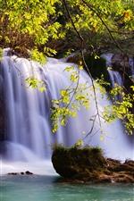 iPhone обои Водопады, веточки, зеленые листья, вода