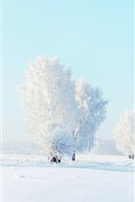 미리보기 iPhone 배경 화면 흰색 세계, 나무, 눈, 겨울