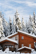 Winter, wood house, thick snow, trees