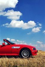 BMW Z3 red cabrio, grass