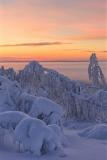 Preview iPhone wallpaper Beautiful winter, thick snow, trees, dusk
