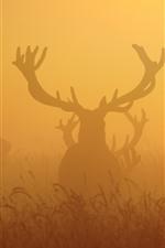 Preview iPhone wallpaper Deers, fog, morning
