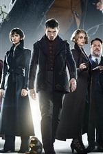 Fantastic Beasts: The Crimes of Grindelwald, 2018 movie
