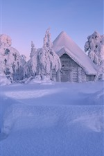 Finland, Lapland, winter, thick snow, trees, house