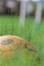 Preview iPhone wallpaper Football, green grass