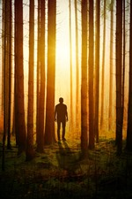 Preview iPhone wallpaper Forest, person, sun rays