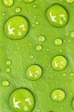 Preview iPhone wallpaper Green leaf, water droplets, macro photography