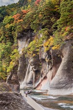 Preview iPhone wallpaper Japan, Gunma, rocks, canyon, river, trees, autumn