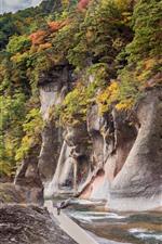 Preview iPhone wallpaper Japan, Gunma, rocks, canyon, river, trees, autumn