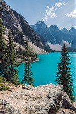 Preview iPhone wallpaper Lake, trees, mountains, blue sky, clouds