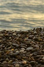 Many cobblestones, sea