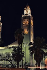 Mosques, trees, night