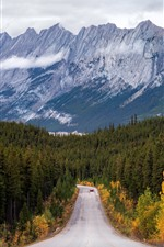 Preview iPhone wallpaper Mountains, trees, road, car, clouds